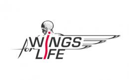 logo_wingsforlife